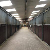 magarinohorsetrading_stable1